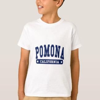 Pomona California College Style tee shirts