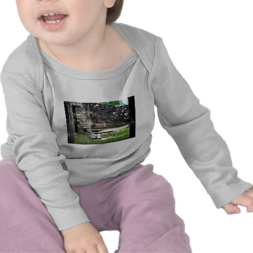 Pompei courtyard marble fountain and bench tee shirt