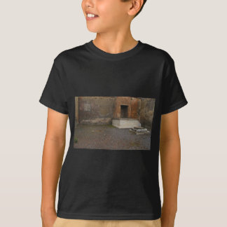 Pompeii- Base of a Column..Relic of Antiquity T-Shirt