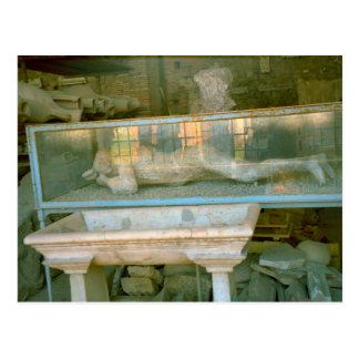 Pompeii, Resident 70CE Postcard