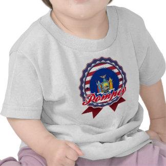 Pompey, NY Tshirt