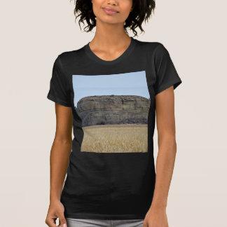 Pompeys Pillar Rock Shirts