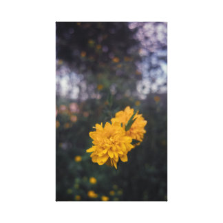 Pompom in yellow flower canvas print