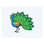 Ponce Peacock Postcard