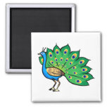 Ponce Peacock Refrigerator Magnets