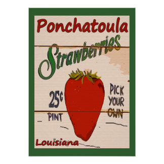 Ponchatoula Strawberries Sign Poster