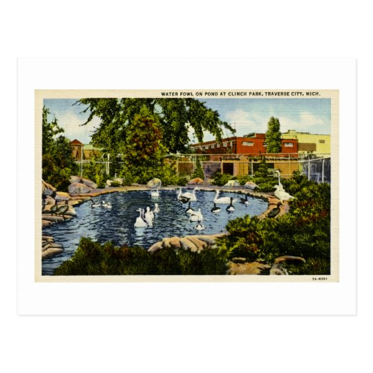 Pond at Clinch Park Traverse City, Michigan Postcard