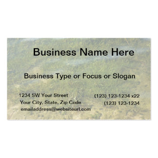 Pond grass underwater image business card template