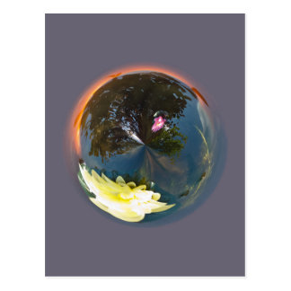 Pond in sphere postcard