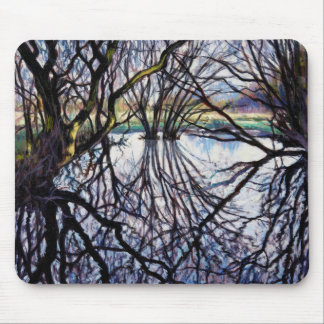 Pond Reflections 2009 Mouse Mat