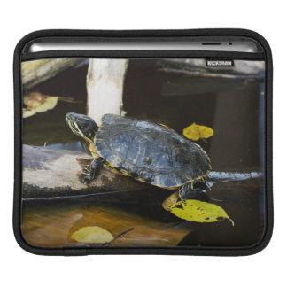 Pond slider turtle in the wild iPad sleeve