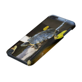 Pond slider turtle in the wild iPod touch (5th generation) case