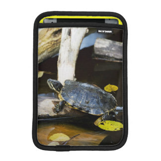 Pond slider turtle in the wild sleeve for iPad mini
