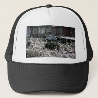 Pond Trucker Hat