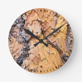Ponderosa pine bark, Washington Round Clock