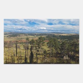 Ponderosa Pine from Devils Tower Rectangular Sticker