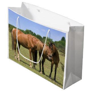 Ponies in Love Gift Bag