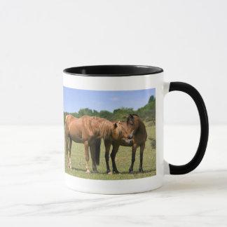 Ponies in Love Mug