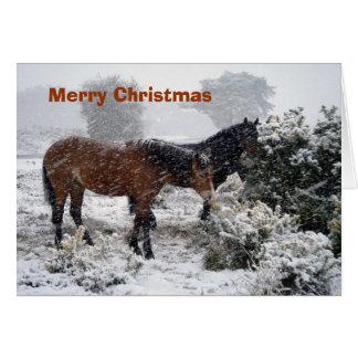 Ponies-in-snowstorm Christmas card