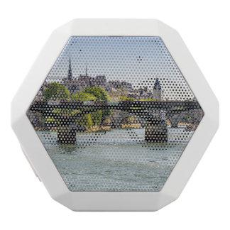 Pont Des Arts, River Seine in Paris, France