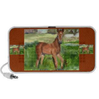 Pony aceo Speaker