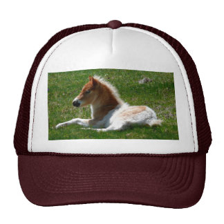 Pony Express Cap