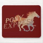 Pony Express Vintage