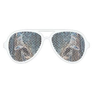 Pony eyes aglow aviator sunglasses
