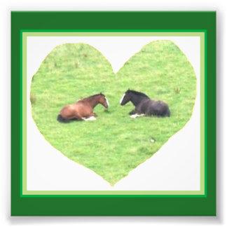 Pony Heart Photo