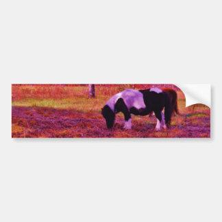 PONY IN A RAINBOW  colored field Bumper Sticker