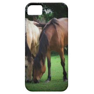 Pony Love iPhone 5 Cases