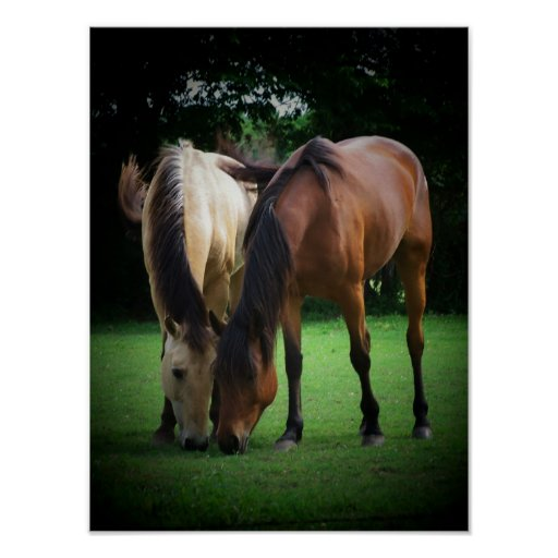 Pony Love Poster