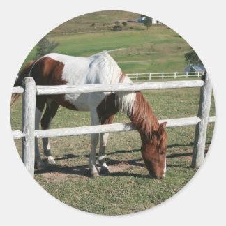pony round sticker