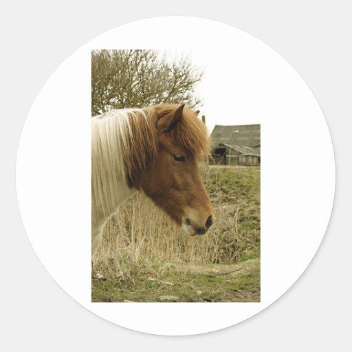 pony round stickers