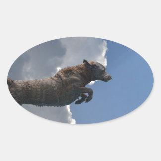 Poo Is Flying!.jpg Oval Sticker