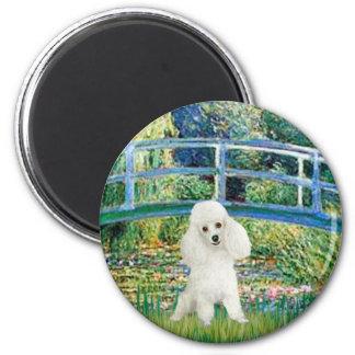 Poodle (14W) - Bridge Magnet