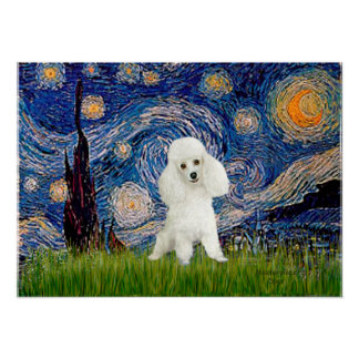 Poodle (14W) - Starry Night Poster