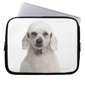 Poodle (1 year old) laptop sleeve