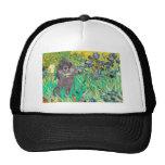 Poodle (8S) - Irises Mesh Hats