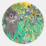 Poodle (8S) - Irises Sticker