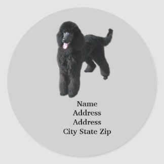 Poodle Address Label Stickers