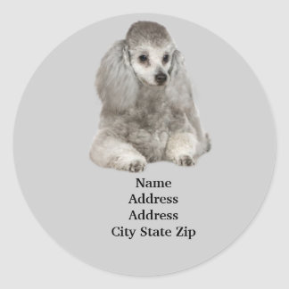 Poodle Address Label Classic Round Sticker