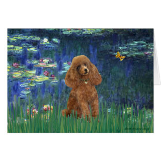 Poodle (Apricot 10) - Lilies 5 Card