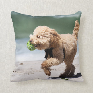 Poodle - Apricot - Poodle Play Beach Dogs Cushion