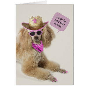 Poodle birthday cards invitations zazzle poodle birthday card by focus for a cause bookmarktalkfo Gallery