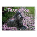 Poodle Black Thank You Card Flowers
