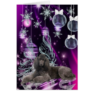 Poodle Christmas Card