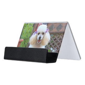 Poodle dog  business card holder