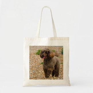 Poodle dog miniature beautiful photo at beach bag