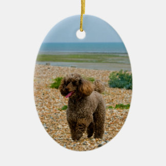 Poodle dog miniature beautiful photo at beach christmas ornament